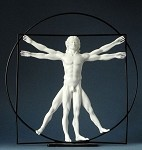 Vitruvian Universal Man by DaVinci White, Large