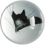 Kitty Sleeping on Pillow Glass Paperweight by Dubout