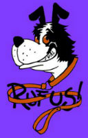 funny dogs playing rufus parastone