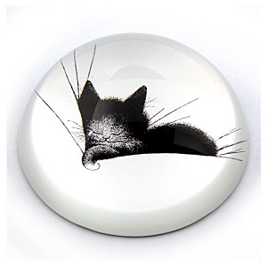 Kitty Sleeping in a Pillow Glass Paperweight by Dubout