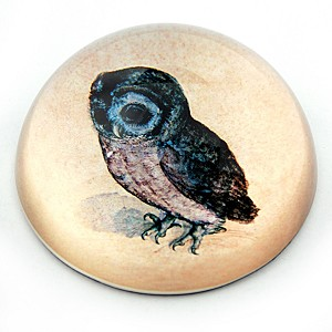 Owl Glass Paperweight by Albrecht Durer