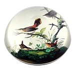 Winter Wrens Glass Paperweight by J.J Audubon
